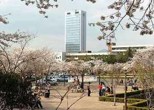 Yeungnam-University-Korea