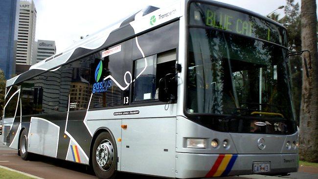 574133-cat-bus