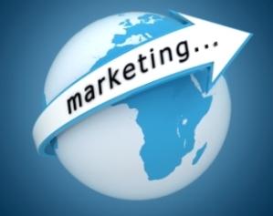 international marketing 310 245