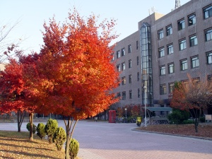 Sungkyunkwan_University_Suwon_Engineering_Building_2_Trees_1