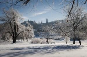 colgate winter 2