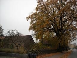 Suasana Desa di Göttingen