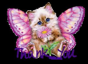 Thank_You_Kitty
