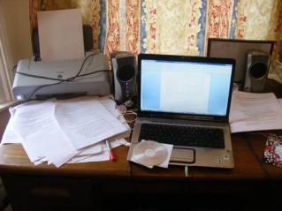 essay-crisis
